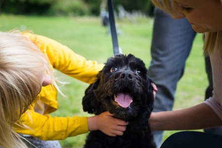 Family & Pet portraits, Lifestyle Shoots, Sarah Hart Photographer in Kent, Sussex