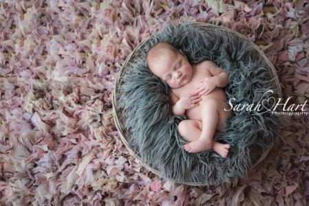 Sarah Hart Photography, baby pictures, newborn in a basket, ruffle rug, Kent newborn photographer