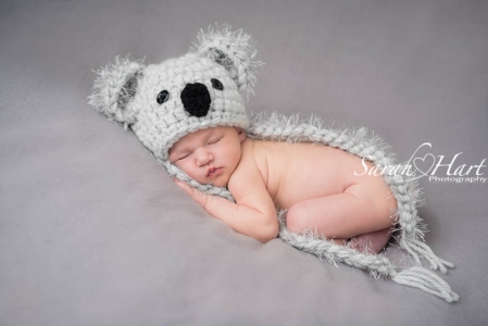 koala bear newborn, baby photographer tunbridge wells