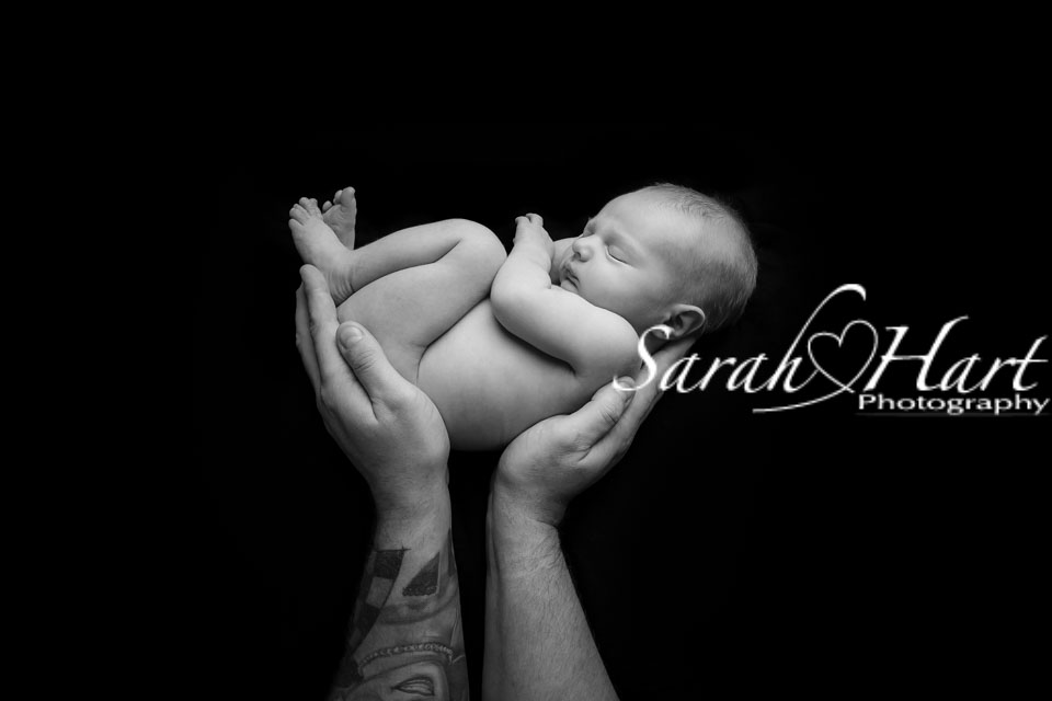Newborn curled up in dads hands captured by kent baby photographer sarah hart photography