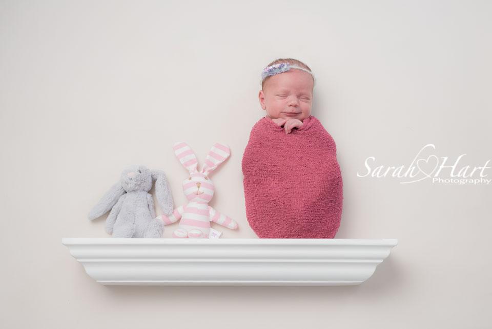 Newborn on a shelf, soft pinks and grey bunny, Tonbridge photographer
