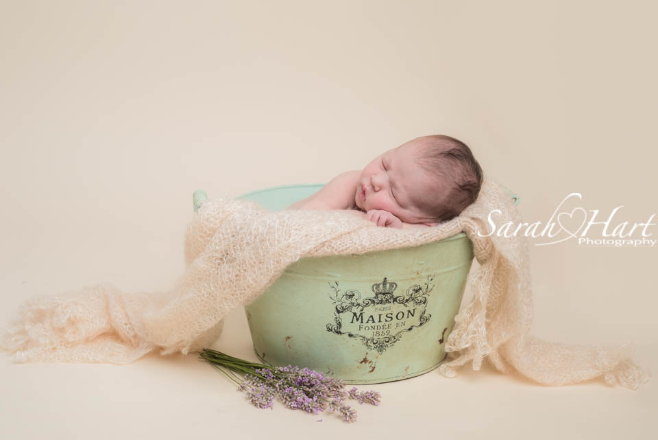 Newborn photography in kent sleepy baby photos baby in a bucket lavender and baby sarah hart photography