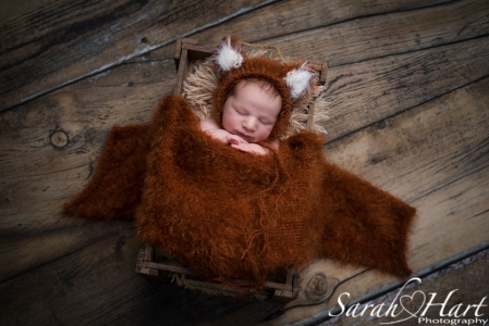 Newborn baby in fox outfit and wooden crate - best newborn photographer in kent