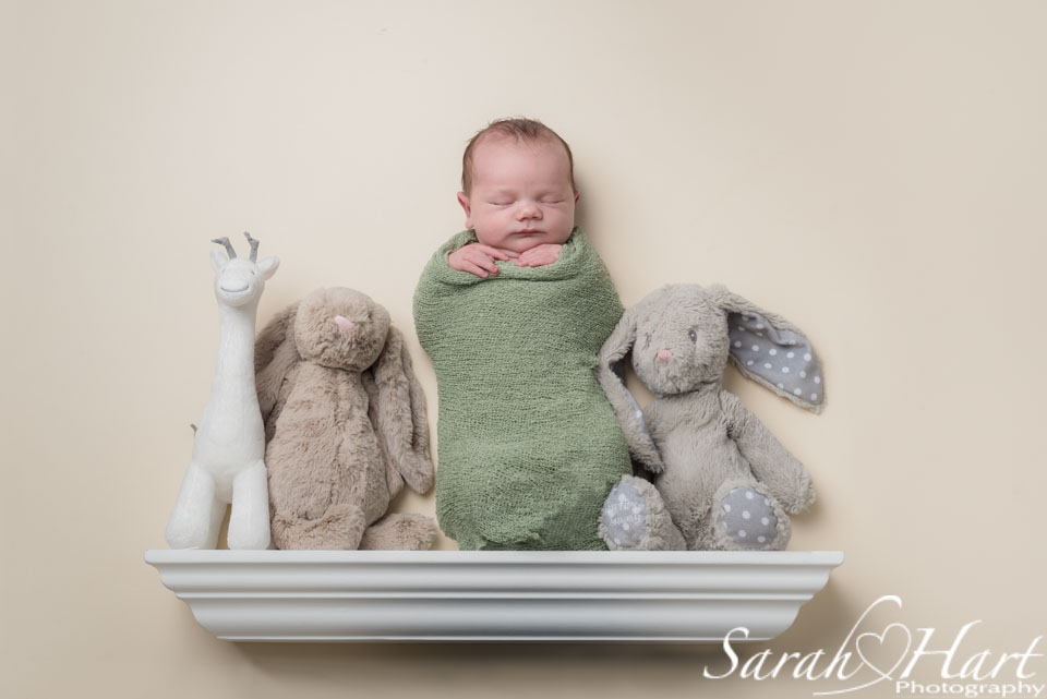 """Newborn on a """"shelf"""" with her toys, soft pastel colours, studio posed newborn photography"""