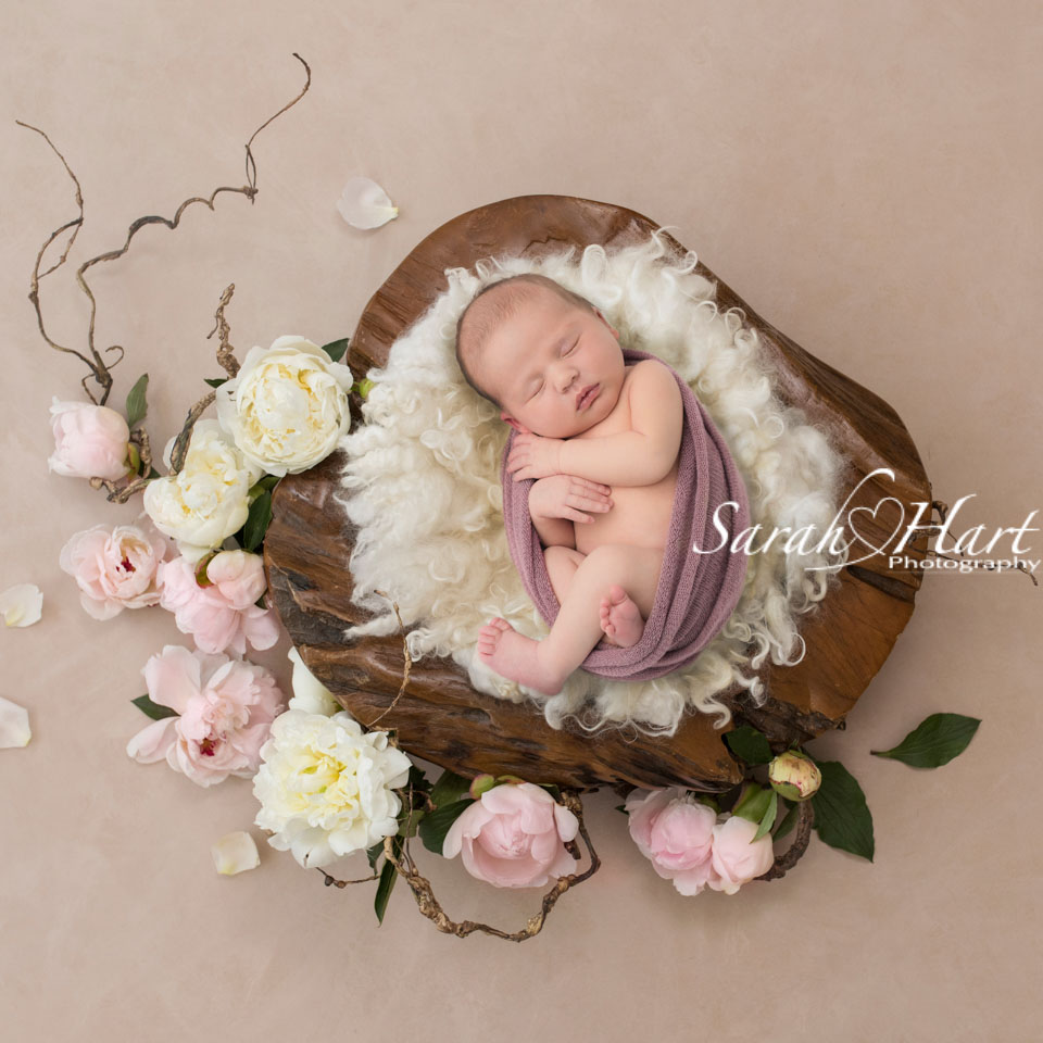 baby amongst spring bloom flowers, newborn portraits Kent