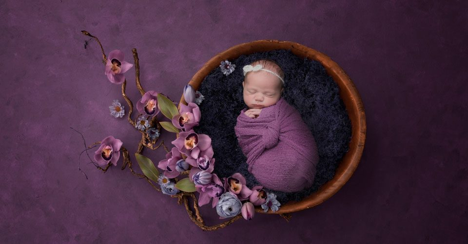 Baby in bowl, orchids, plum and purple tones