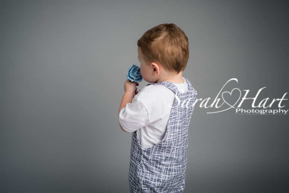 toddler smelling a rose, tonbridge baby photographer