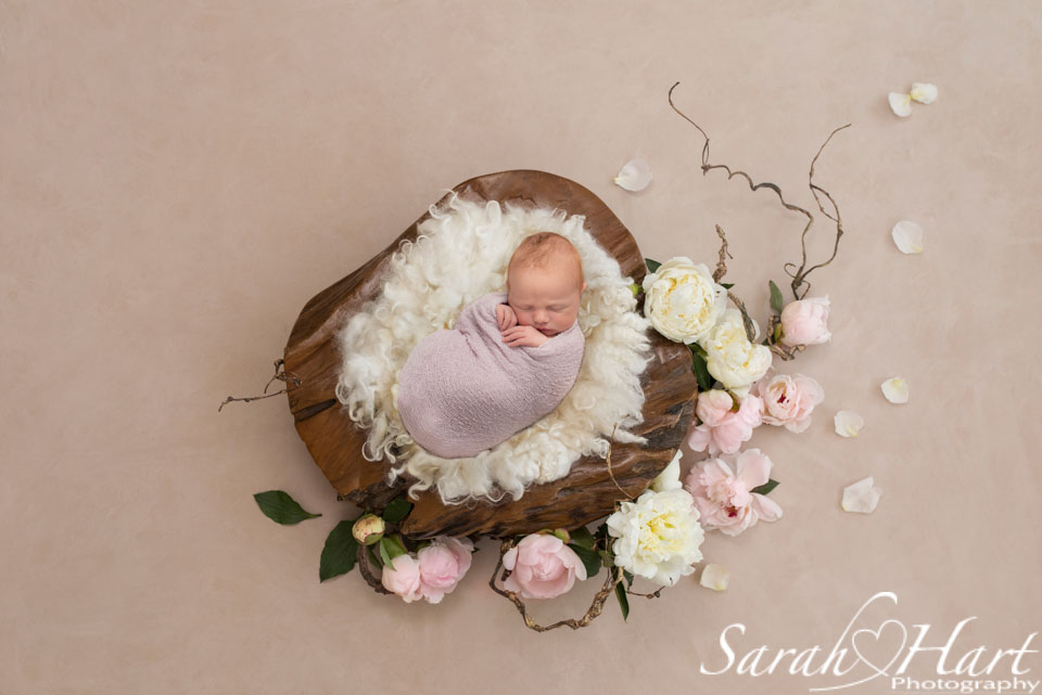 stunning baby photography, wall art, floral design for newborn in bowl