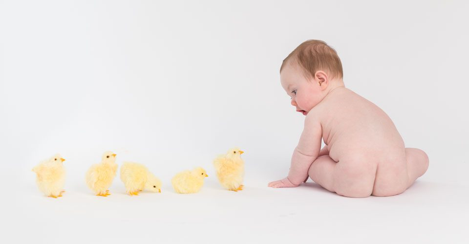 baby and chicks, gorgeous baby photos,