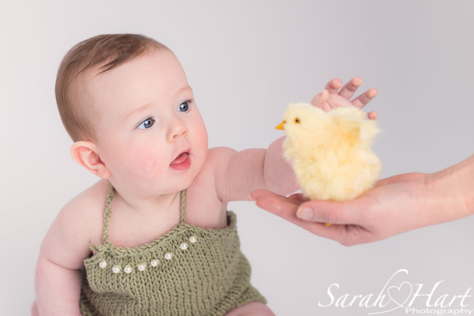 baby girl reaching for chick, Tunbridge Wells baby photographer