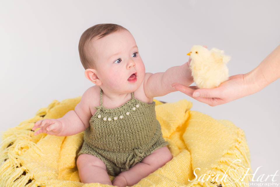 baby girl with chick, spring photography shoot, tonbridge photoshoot