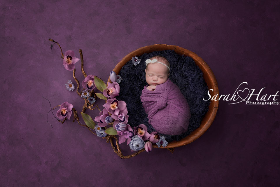 newborn baby in bowl with orchids, plum and purple tones