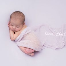 Sarah Hart Newborn Photography