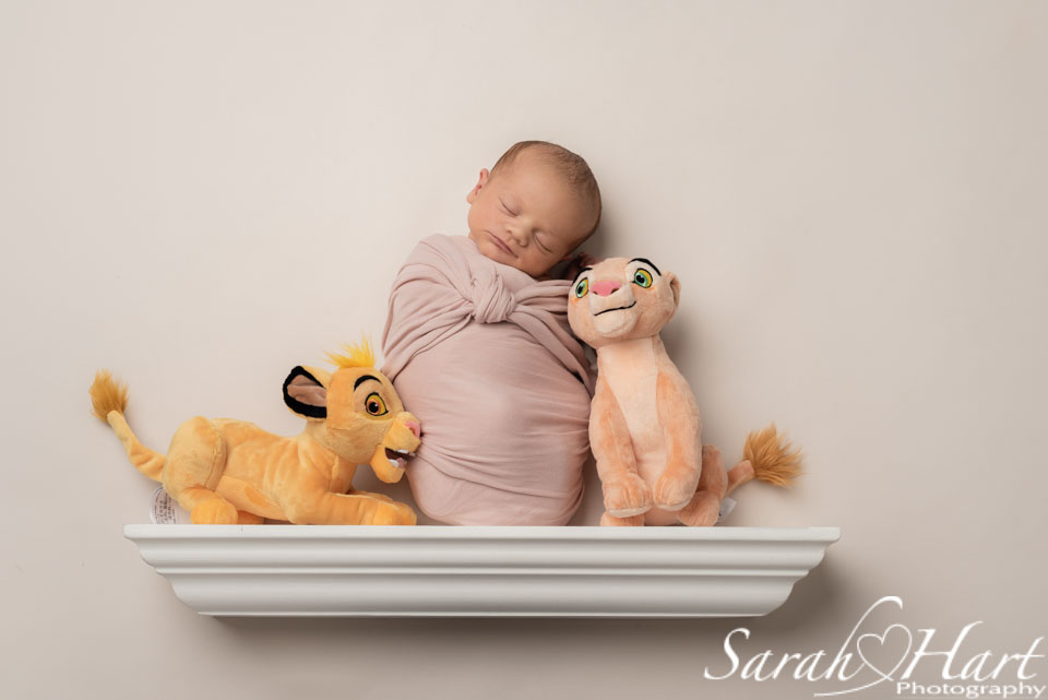 shelfie images, newborn on a shelf, tonbridge photography