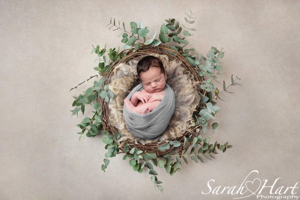 specialist newborn photographer kent, baby boy in nest