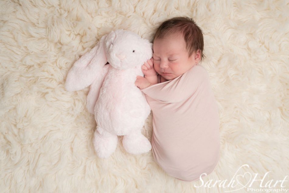 Newborn with her soft toy for size comparison, newborn photographer Sarah Hart Photography