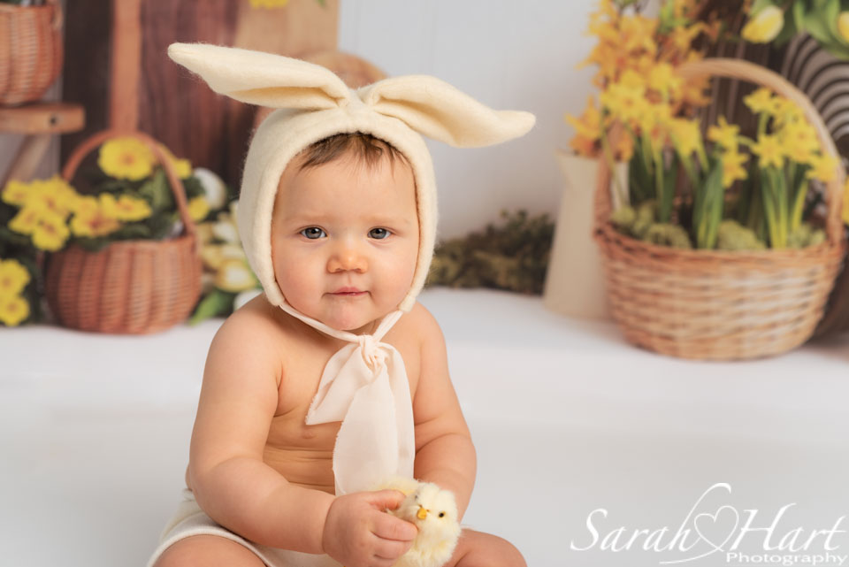 bunny outfit on little girl holding chick, Spring mini sessions in Tonbridge