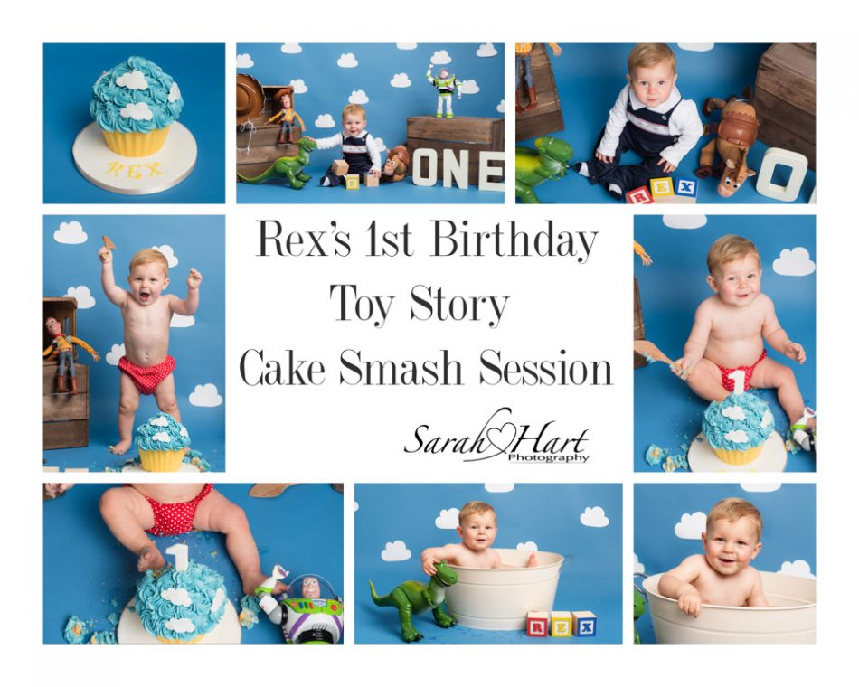 Toy Story Cake Smash montage for Rex's 1st birthday