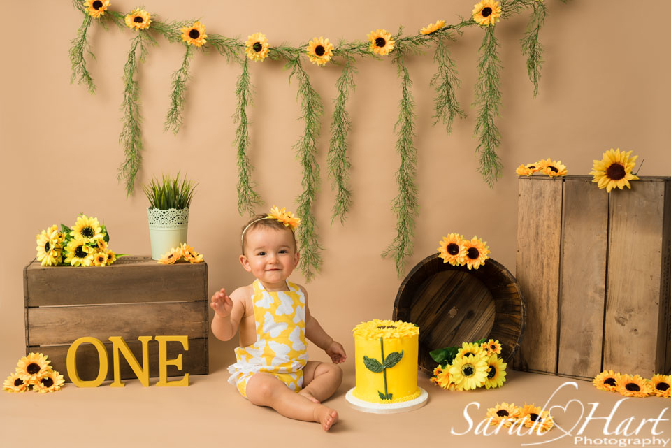 sunflower cake smash on brown backdrop
