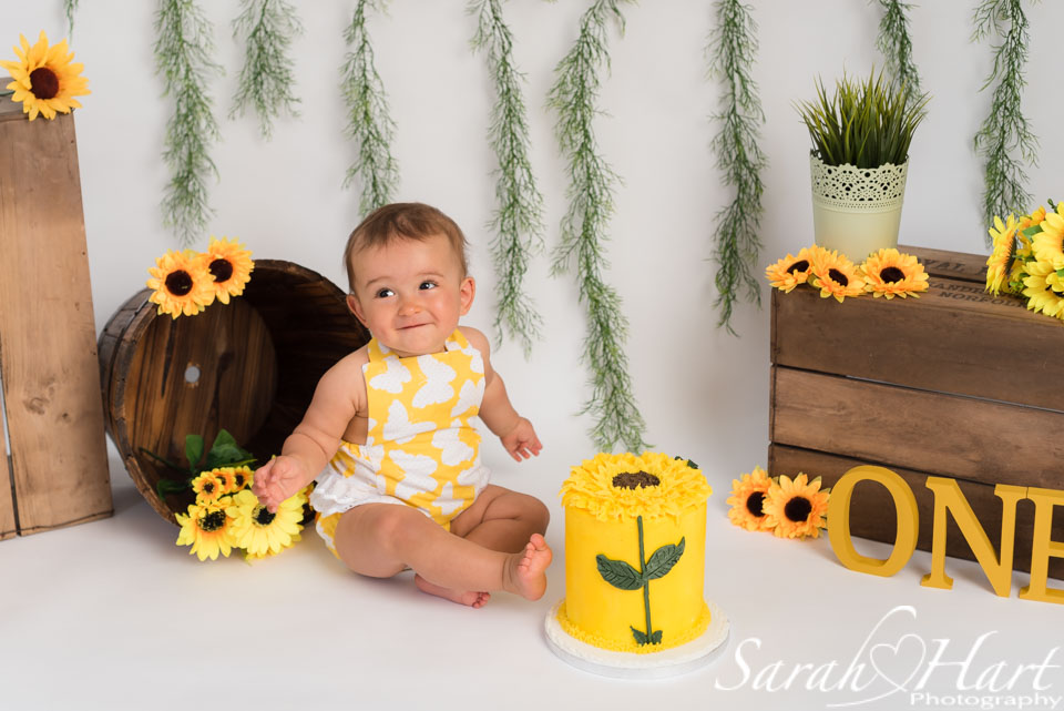 sunflower cake smash on white backdrop