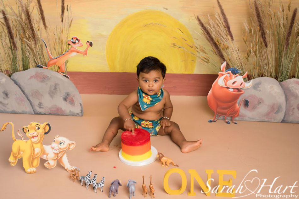 Lion King design for baby boy's first birthday portrait shoot, Maidstone