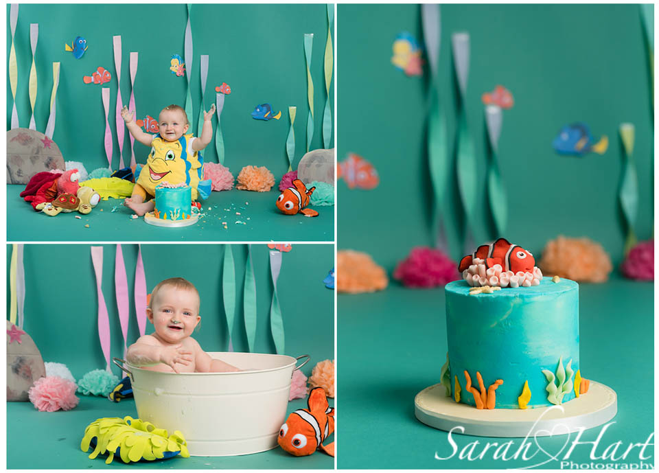 under the sea cake smash set