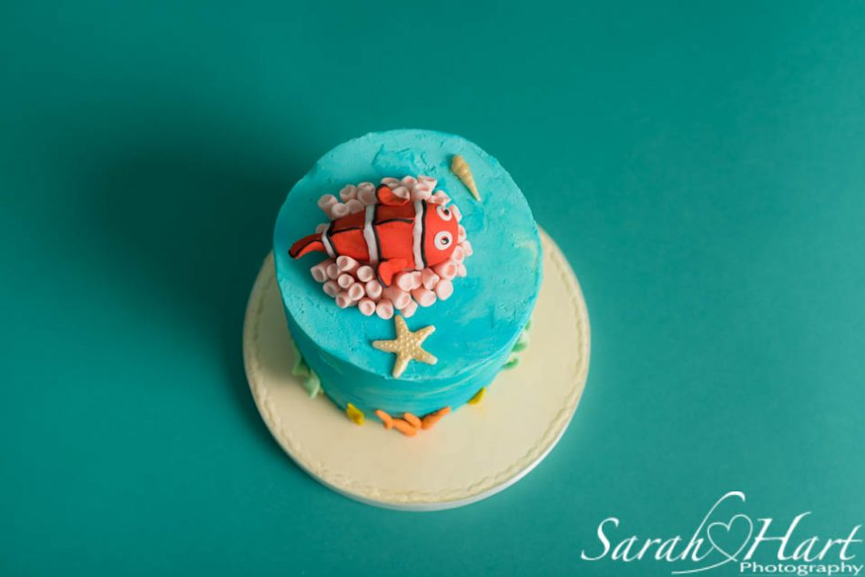stunning finding nemo cake for under the sea cake smash, tunbridge wells phptographer