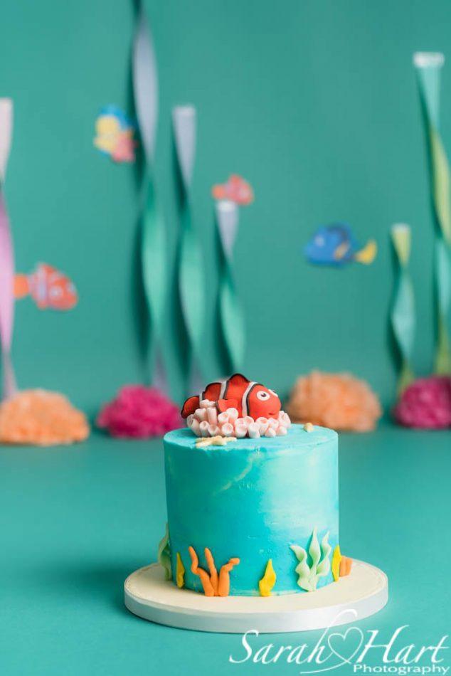 under the sea cake with nemo for a cake smash, sevenoaks photographer